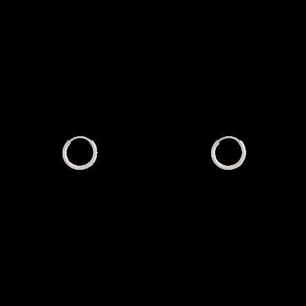 گوشواره نقره حلقه کوچک سایز 1